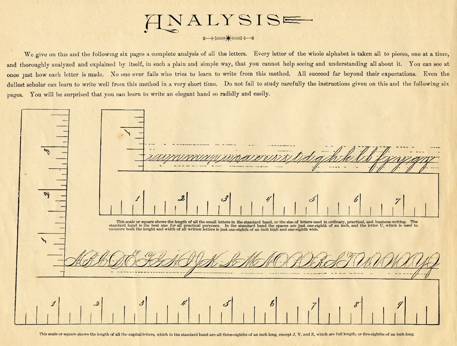 spencerian saturday ephemera numbers and letters the graphics