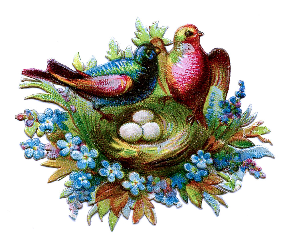Victorian Clip Art - Scrap Birds with Nests & Flowers - The ...
