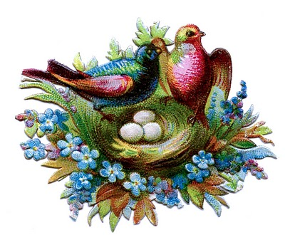 Victorian Clip Art Scrap Birds With Nests Amp Flowers