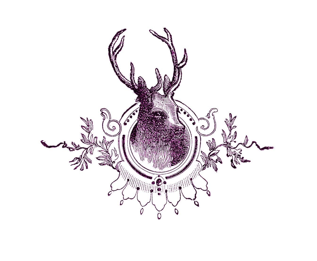 vintage christmas image deer head engraving the graphics fairy. Black Bedroom Furniture Sets. Home Design Ideas