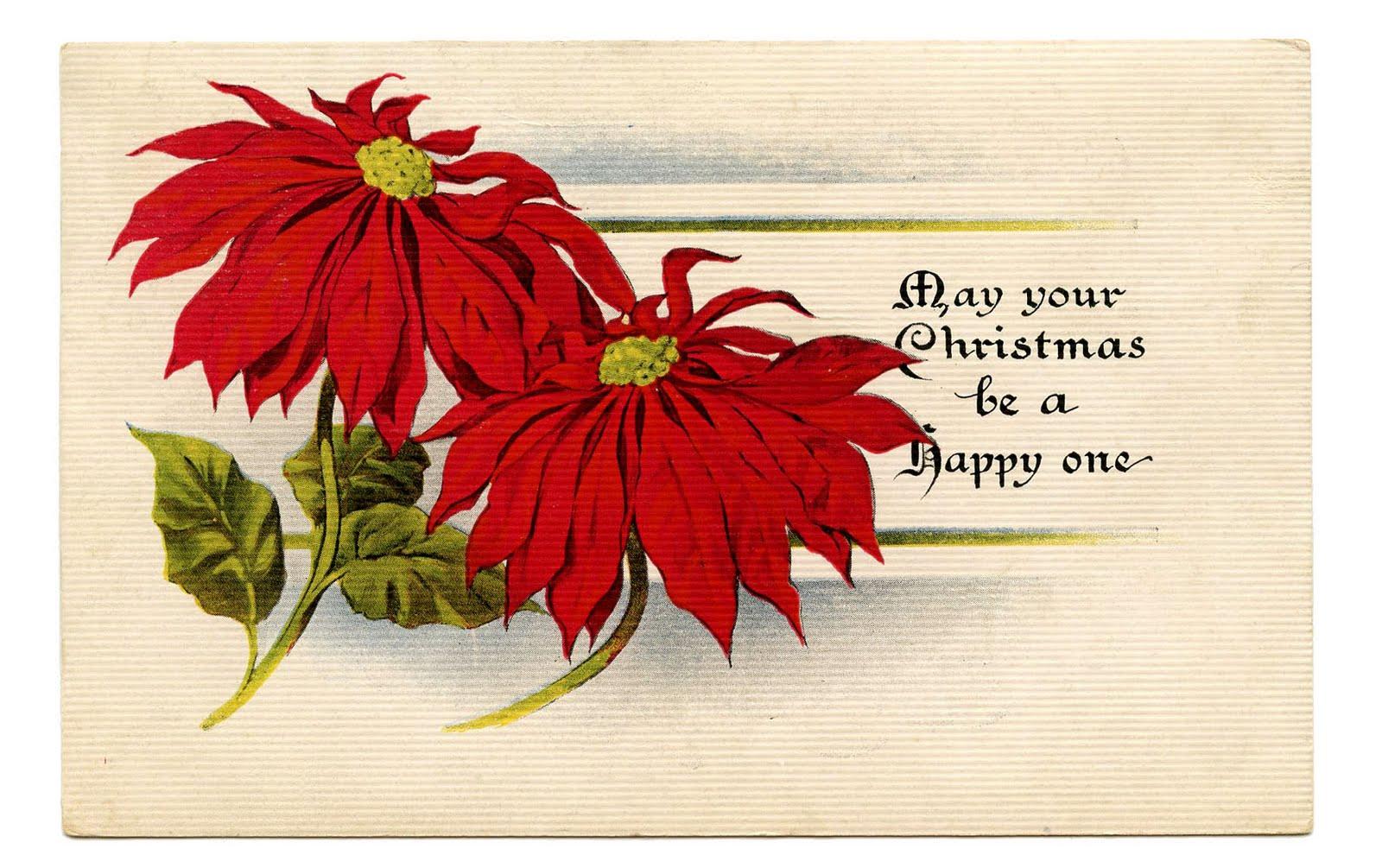 Vintage Christmas Clip Art Poinsettias The Graphics Fairy